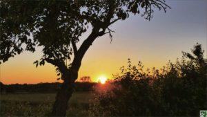 Sonnenuntergang Fasten Seminare Dobbrikow